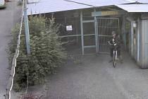 Policisté obvodního oddělení v Orlové žádají veřejnost o spolupráci při pátrání po lidech, kteří 4. srpna před 7. hodinou ranní v Lazecké ulici v Orlové-Lazech překonali zajištěný elektronický zámek železné mříže a vnikli do kolovny.