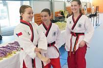 V sobotu zavítali do Havířova vyznavači korejského bojového umění Taekwondo WTF. Na programu byla Extraliga a Národní liga v disciplíně poomsae.