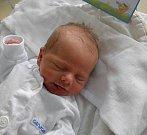 Vítek Hojecký se narodil 11. ledna paní Nikol Golasowské z Rychvaldu. Porodní váha miminka byla 2720 g a míra 45 cm.