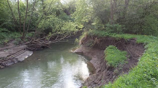 Břehy řeky Lučiny poznamenává každá větší voda. Meandry jsou chráněné, proto do nich člověk nemá zasahovat.