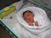 Adélka Josieková se narodila 27. listopadu paní Veronice Kirvejové z Karviné. Po porodu dítě vážilo 4060 g a měřilo 50 cm.