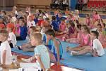 Ve Sportovní hale Žákovská se konalo cvičení dětí pro rodiče s účastí úspěšných sportovních gymnastů.