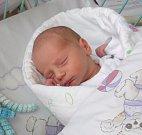 Davídek Solik se narodil 11. září paní Jarmile Říhové z Prahy. Po porodu miminko vážilo 3100 g a měřilo 50 cm.