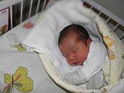 Eliška Lincerová se narodila 3. února paní Boženě Wilczkové z Karviné. Po porodu Eliška vážila 3890 g a měřila 51 cm.