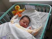 Martinek Škroň se narodil 26. listopadu paní Gabriele Škroňové z Orlové. Po porodu malý Martinek vážil 3270 g a měřil 50 cm.
