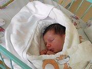 Klárka Urbańczyková se narodila 14. listopadu paní Markétě Šarkőziové z Orlové. Po porodu miminko vážilo 3380 g a měřilo 49 cm.