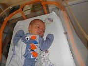 Rostislav Kolek se narodil 29. prosince paní Darině Kolkové z Karviné. Porodní váha dítěte byla 2810 g a míra 49 cm.