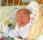 Marcus Kocyan se narodil 4. října mamince Nikole Kocyanové z Karviné. Po narození chlapeček vážil 3290 g a měřil 48 cm.