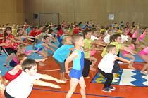 Děti z havířovských školek cvičily s olympioniky.