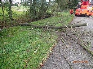 Strom spadl na dráty