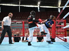 Festival bojových umění v Karviné. K vidění byl i čínský box, takzvaný sanshou neboli sanda.