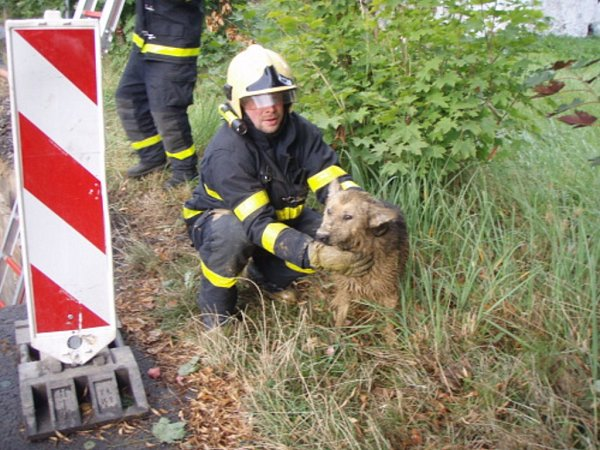 Záchrana psa zvýkopu.