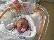 Emička Vilhanová se narodila 4. ledna paní Šárce Trombikové z Karviné. Po narození Emička vážila 3510 g a měřila 51 cm.