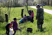 Mladí ochránci omlazují stromořadí.