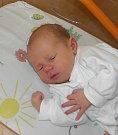 Mikulášek Pala se narodil 22. února mamince Radce Palové z Karviné. Po narození chlapeček vážil 3170 g a měřil 49 cm.
