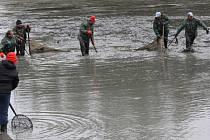 Karvinští rybáři v sobotu vylovili petrovický chovný rybník Urbančík I.