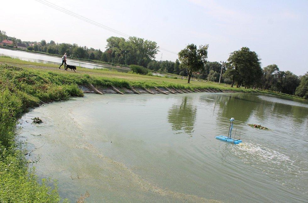 Ranní kontroly rybníků a přístrojů na okysličení vody jsou nyní každodenní starostí rybářů v kraji.