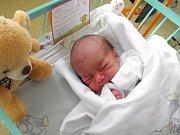 Hanička Mišíková se narodila 22. listopadu paní Janě Tokárové z Karviné. Po porodu dítě vážilo 3210 g a měřilo 46 cm.