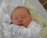 Petr Pavlorek se narodil 4. ledna paní Andree Končekové z Karviné. Porodní váha chlapečka byla 3900 g a míra 51 cm.
