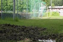Divoká prasata zryla kraj tréninkového hřiště v Dolních Datyních.
