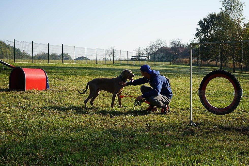 Nový psí park v lokalitě lesoparku Dubina.