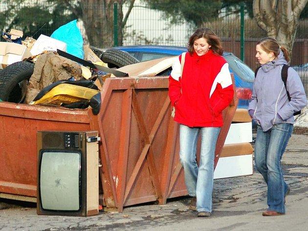 Odpad patří do kontejneru. Necháte–li ho vedle, zakládáte černou skládku. Tolik litera zákona.  Ilustrační foto.