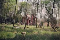 Evangelický hřbitov s troskami kaple v Karviné-Dolech.