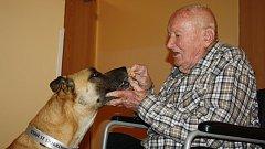 Dobrácký Harry se našel v karvinském útulku, dnes je hvězdou místního domova pro seniory.
