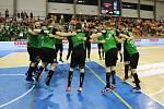 Házenkáři Karviné (v zeleném) dobyli Plzeň a mají mistrovský mečbol!