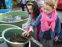 Tradiční Rybí slavnosti se konaly v sobotu v centru Rychvaldu.