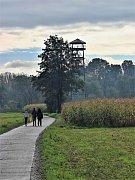 27 metrů vysoká rozhledna na polském břehu řeky Odry.