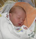 Štěpánek Fiedor se narodil 11. února paní Marii Fiedorové z Českého Těšína. Po porodu dítě vážilo 3650 g a měřilo 51 cm.