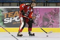 Hráči in-line hokeje letos neprožili ideální sezonu.