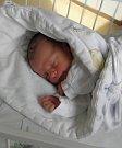 Michálek Somič se narodil 2. března paní Oldřišce Somičové z Karviné. Po porodu dítě vážilo 3080 g a měřilo 50 cm.
