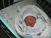 Davídek se narodil 4. února paní Dominice Kalokové z Orlové. Po porodu chlapeček vážil 2390 g a měřil 45 cm.