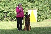 Ověřit si poslušnost svého psa mohli závodnici, kteří se zúčastnili kynologického závodu v Petřvaldu. Ten uspořádala místní kynologická stanice.