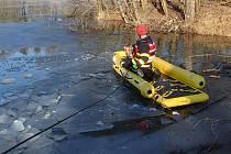 Záchrana staforda Artuše v Karviné, místní části Fryštát.
