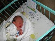 Mareček se narodil 8. ledna paní Anně Frélichové z Orlové. Porodní váha chlapečka byla 2300 g a míra 46 cm.