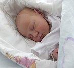 Tereza Šutvajová z Karviné se narodila 19. srpna. Měřila 50 cm a vážila 3130 g. Maminka Irena Kánská.