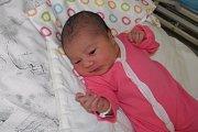 Mishel Žigová se narodila 8. října mamince Petře Žigové z Orlové. Po porodu dítě vážilo 3400 g a měřilo 48 cm.