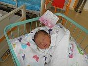 Sofia Olga Pužová se narodila 29. prosince paní Olze Pužové z Karviné. Po narození miminko vážilo 2360 g a měřilo 45 cm.