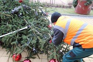Předčasné kácení vánočního stromu v Havířově