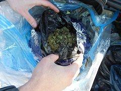 Zajištěná marihuana (ilustrační foto).