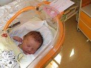 Michaelka Bílková se narodila 11. března mamince Ivoně Martynkové z Karviné. Po porodu miminko vážilo 3370 g a měřilo 49 cm.