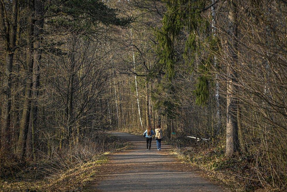 Lesopark v Havířově.