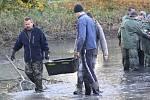 V Dětmarovicích před elektrárnou vylovili v sobotu rybáři rybník. Nejvíce mají kaprů, které nyní nasadí do sportovních rybníků.