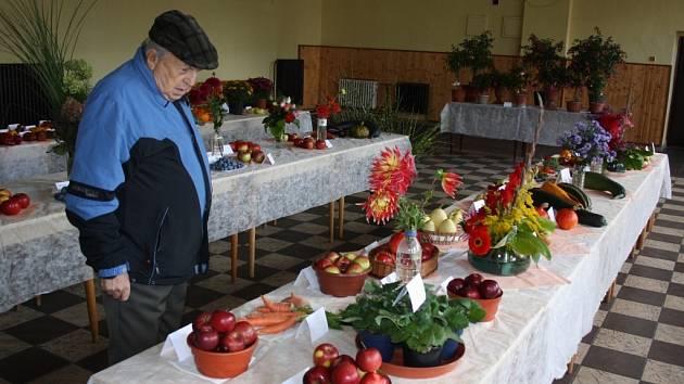 Výstava ovoce, zeleniny a květin v Bohumíně.