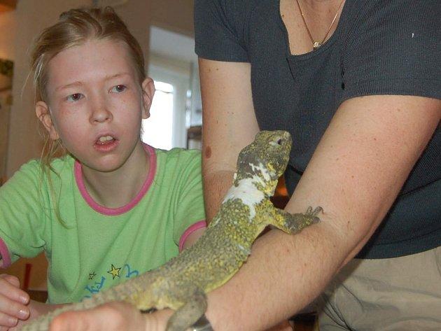Děti budou moci pozorovat zvířata.