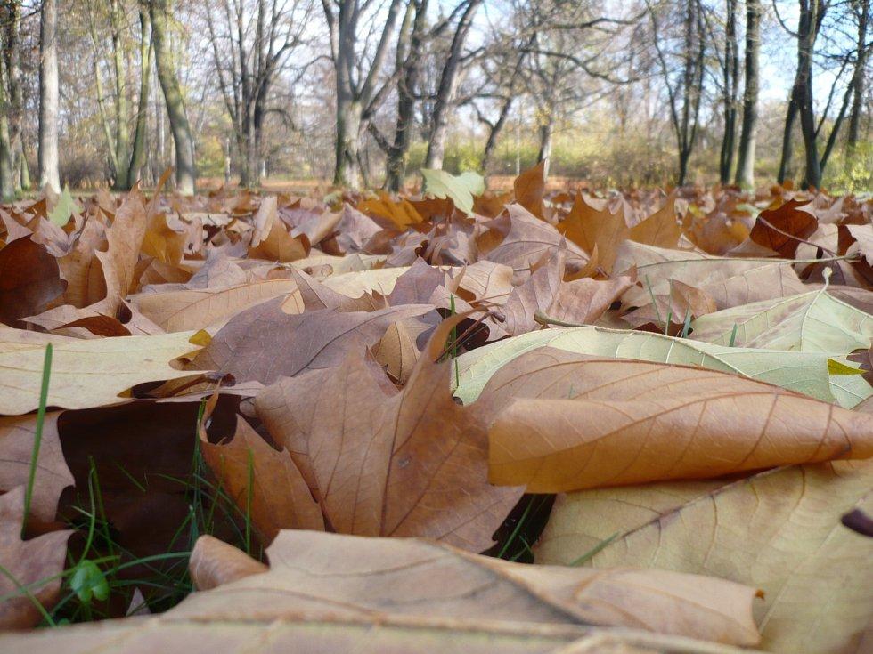 Podzimní příroda v Darkově.