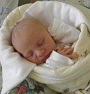 Julie Šafratová se narodila 18. dubna paní Martině Šafratové z Dolní Lutyně. Po narození Julinka vážila 2780 g a měřila 48 cm.